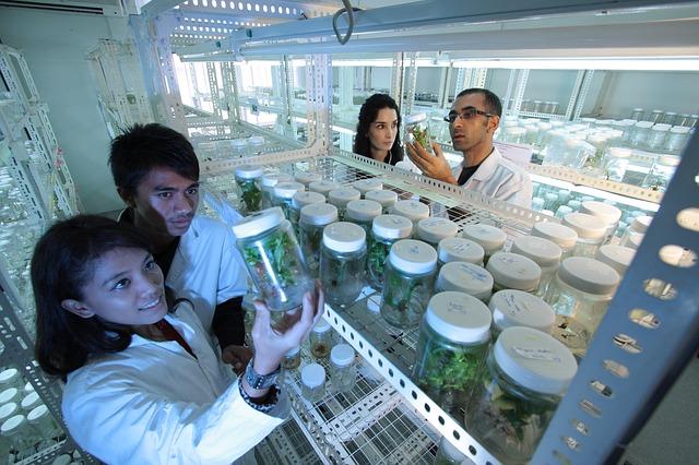 San Diego Biotech