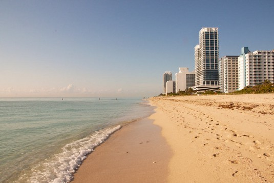 The Six Things You Have to Do in Miami | PC Housing